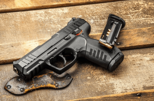 Ruger SR22 Review & Buyer's Guide